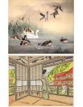 Collections: Autumn 2019 / The Kyoto Art World in the Meiji Era / The Prints of Senpan Maekawa