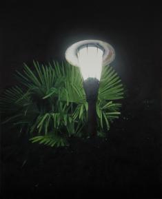小柳裕《The Light with the Palm Leaves (Source of Light 14-3)》2014年