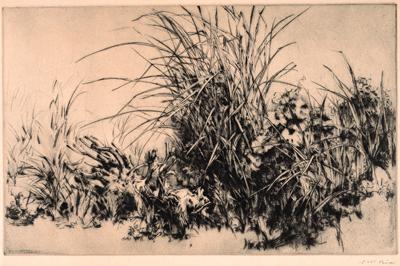 高羽敏《草》1943 公益財団法人 西宮市大谷記念美術館蔵   【後期展示】